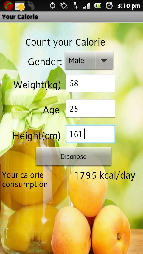 Your Calorie Counter - screenshot