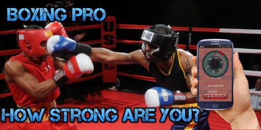 Boxing Pro - 力メーター