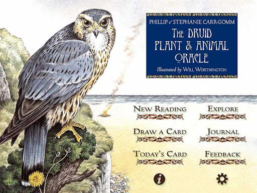 玩免費娛樂APP|下載Druid Oracle Cards app不用錢|硬是要APP