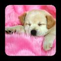 Puppy Porn icon