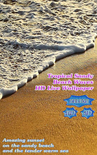 Tropical Sandy Beach Waves HD