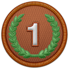 DYCD Bronze