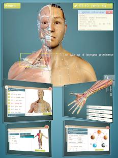 玩免費醫療APP|下載Advanced Acupuncture 3D app不用錢|硬是要APP