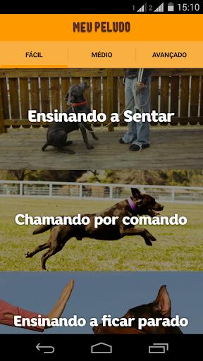 Guia de Adestramento para Cães