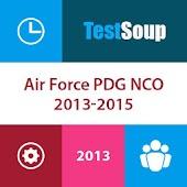 AF PDG NCO '13-'15 Flashcards