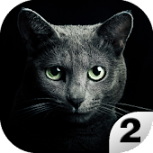Find A Cat 2. Free! Android APK Download Free By SRSDT