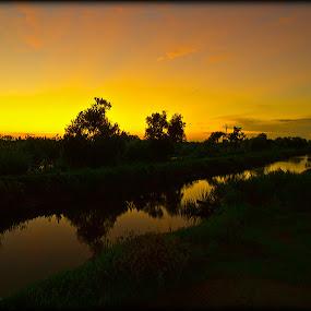 Sunrise On The Bayou by Larry Landry - Landscapes Sunsets & Sunrises ( southern living, louisiana, sunrise, bayou, pecan island )