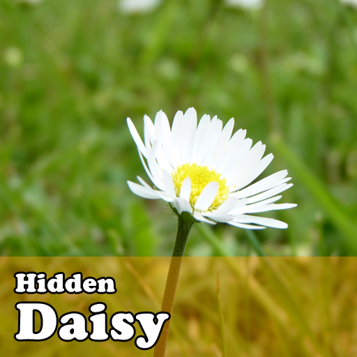 Hidden Object Games  Daisy