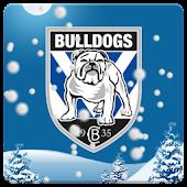 Canterbury Bulldogs Snow Globe