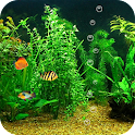 FishBowl HD Live Wallpaper icon