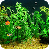 FishBowl HD Live Wallpaper