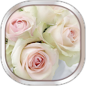 White Rose Live Wallpaper icon