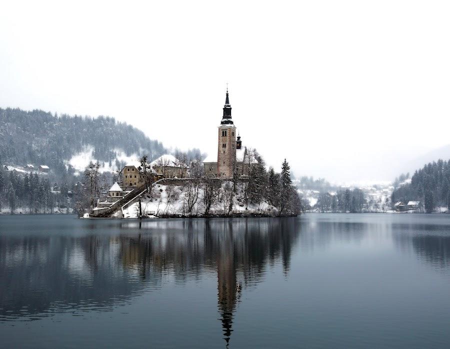 winter dream VI by Almas Bavcic - Landscapes Travel