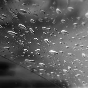 Raindrops by Stefan Ungureanu - Black & White Macro ( focus zoom, black and white, windshield, photo of the month, raindrops, winner, best photo, photo of the day, rain, macro., black & white, macro )