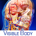 Human Anatomy Atlas logo
