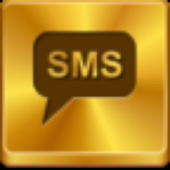 Emergency SMS window service