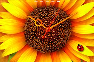 Screenshot of SunFlower* LWP Trial