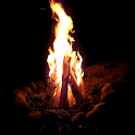 Fireplaces and Campfires Pro