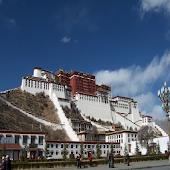 The Tibet News App