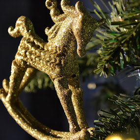 Golden Rocking Horse by Abbie Pearsall - Artistic Objects Other Objects ( tree, decoration, happy, christmas, fun, presents )