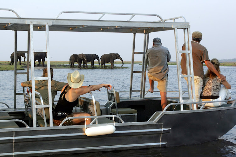 View elephants and other game along the Chobe River during your river cruise aboard the Zambezi Queen.