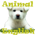 Animal English icon