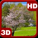 Wonderful Sakura Zen Scenery icon