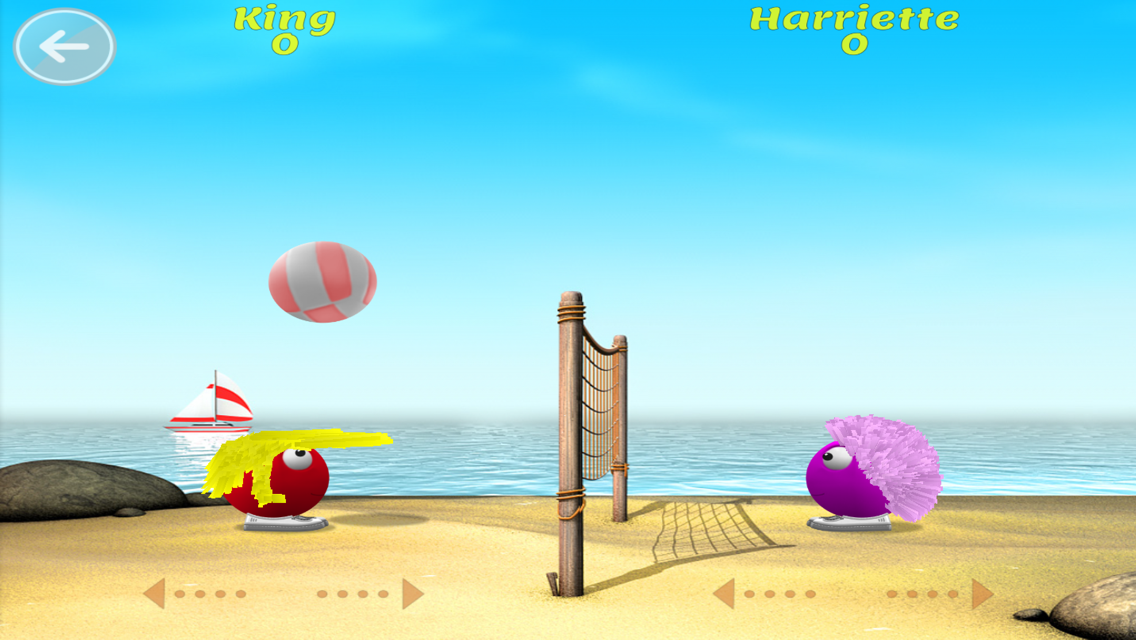 Hairy Harry Beach Volleyball- screenshot