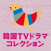 韓国テレビドラマコレクション Lite 2012 キネマ旬報