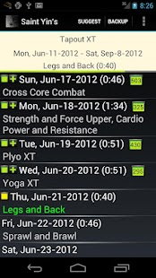 St. Yin's DVD Workout Tracker - screenshot thumbnail