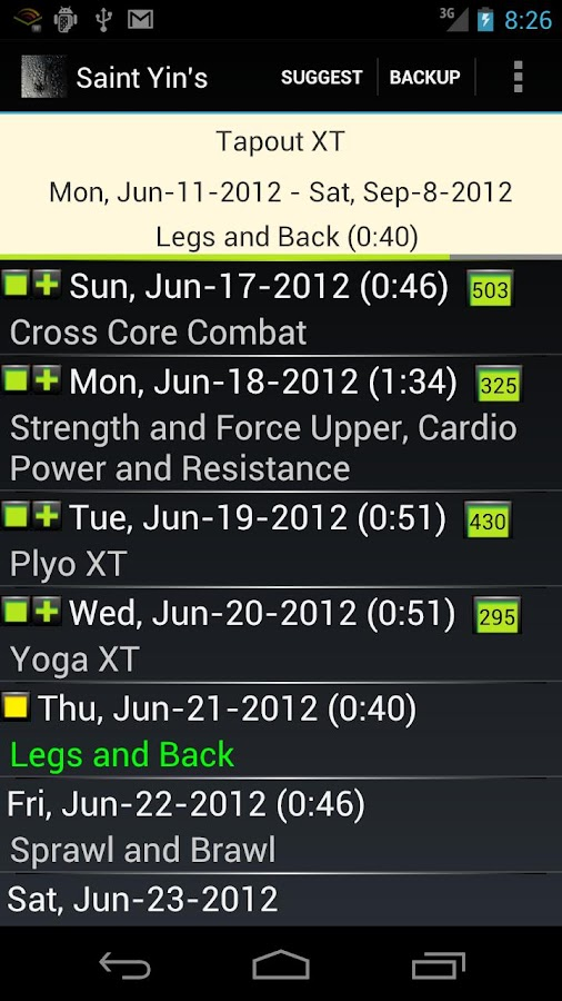 St. Yin's DVD Workout Tracker - screenshot