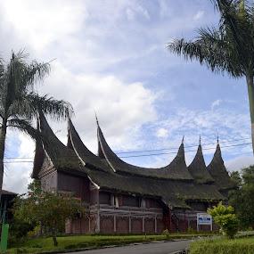 by Alvi Eko Pratama - Buildings & Architecture Public & Historical ( indonesia, traditional, house, architecture, culture )