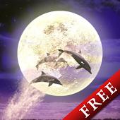 Moonlit Night Trial