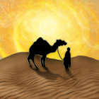 Knizia's Through the Desert icon