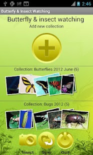 Butterfly & Insect Collector - screenshot thumbnail