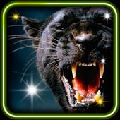 Wild Pantera live wallpaper