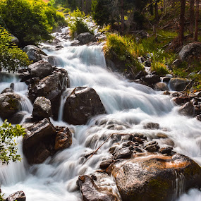 old river by Mihai Popa - Landscapes Waterscapes ( water, mountain, oetz, tyrol, austria, river,  )