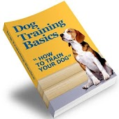 Dog Training Basics Mega Guide
