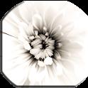 White Live Wallpaper icon