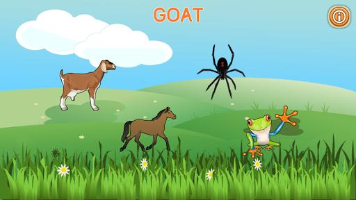 Preschool Animal Quiz