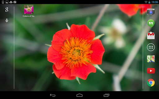 【免費個人化App】Colors of Nature-APP點子
