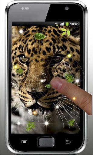 Jaguar Jungle live wallpaper