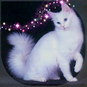My Pet Cat - My World icon