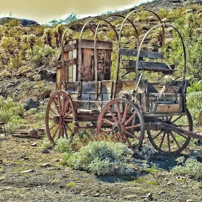 Old Wagon by Deb Bulger - Transportation Other (  )