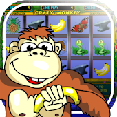 Free Crazy Monkey slot machine APK for Windows 8