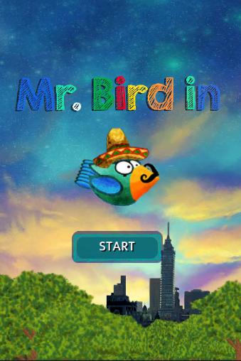 Mr bird in