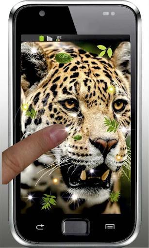 Jaguar Predator HQ LWP