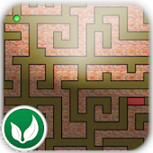 Maze A Rati