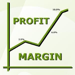 Health Food Store Profit Margin
