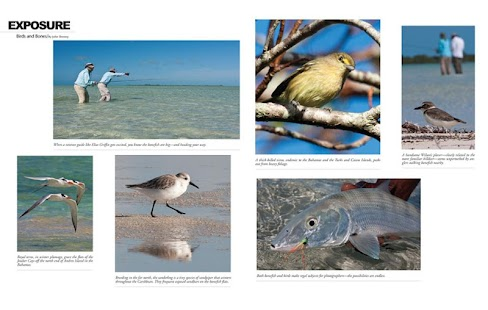 Eastern fly fishing android apps on google play for Eastern fly fishing magazine
